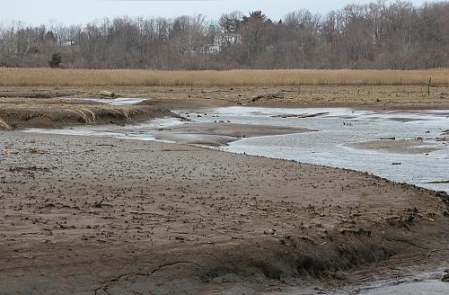 اضغط على الصورة لعرض أكبر  الاســـم:tidal_mud_flats_Watsons-Creek_MALeck1.jpg المشاهدات:152 الحجـــم:19.9 كيلوبايت الرقم:2161